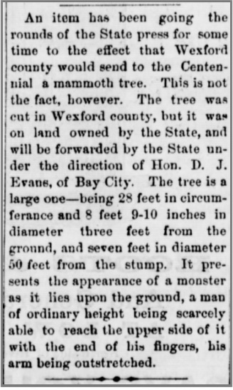 8-alpena-argus-3-15-1876-giant-tree